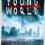 [Rezension] Chris Weitz: Young World 1 – Die Clans von New York ist ein Endzeit-Roadtrip